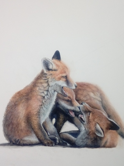 foxcub2